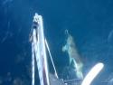 0035-regata-la-ruta-de-la-sal-viajes-barco-en-semana-santa